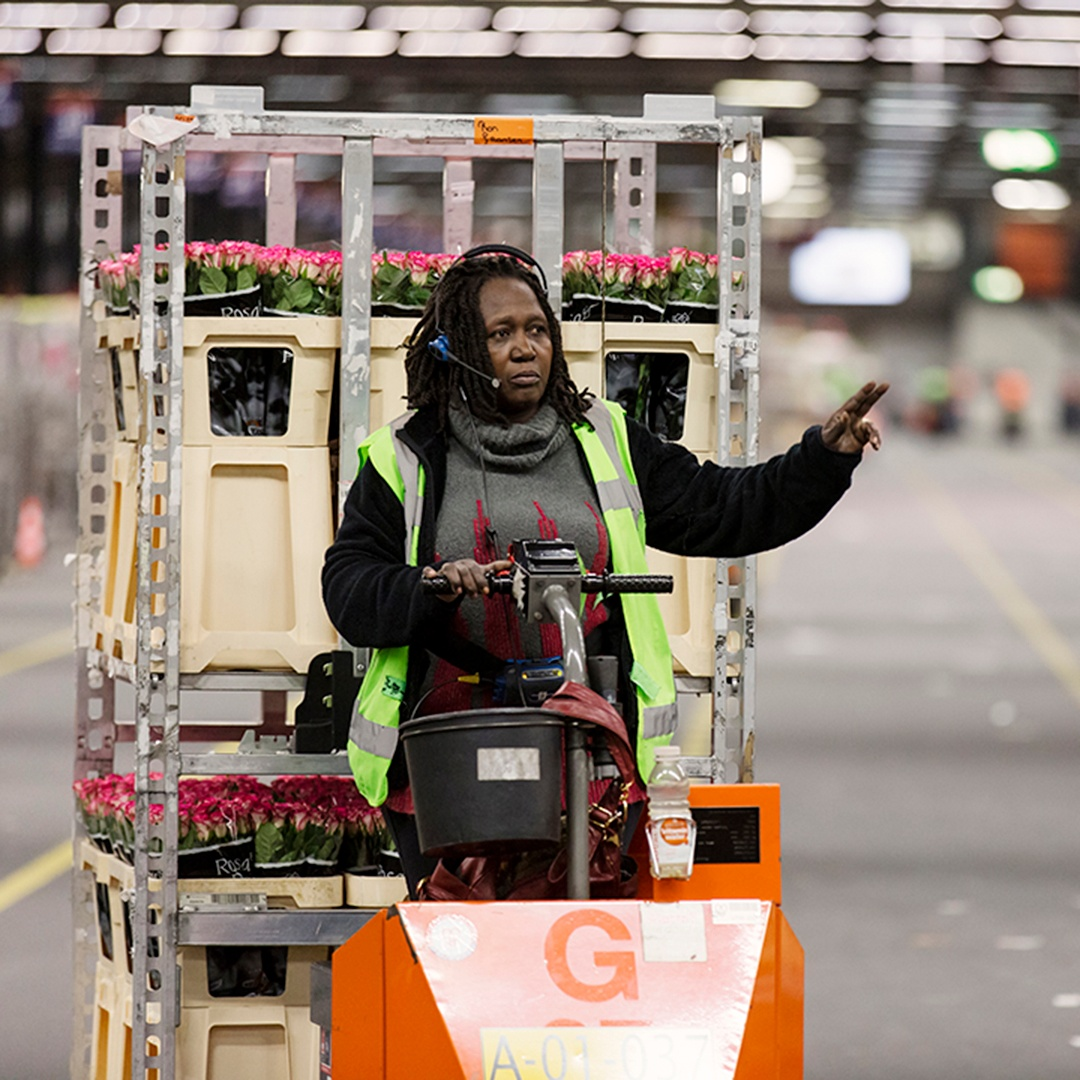 royal-floraholland-hero2